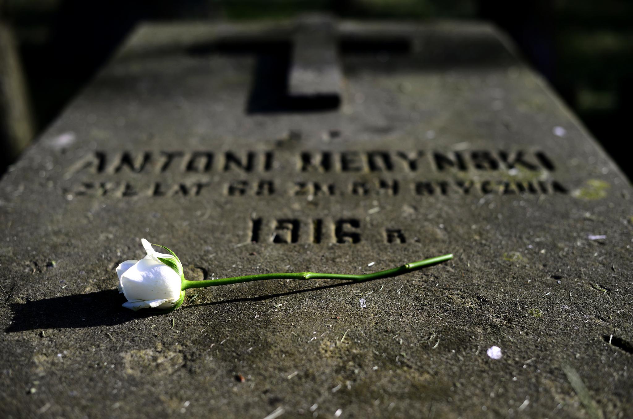 Diecezjalny Dzień Wspólnoty: wspominamy zmarłych z naszej wspólnoty