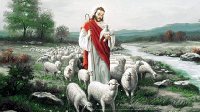 RozważaNiedzielne #76 | IV Niedziela Wielkanocy  22 kwietnia 2018 r.